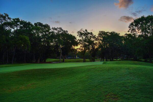 Durban country club med golf