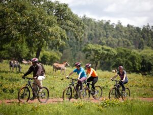 Mountainbiking i Swaziland